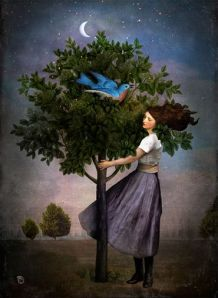 christian schloe a bluebird song