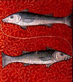 240px-Pisces2