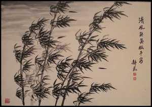 bambu-ao-vento