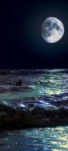 moon i love
