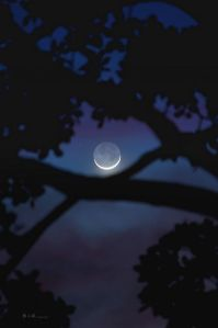 new moon flickr