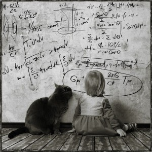 Andy Prokh - a girl and her cat - twenty words