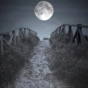lua cheia no caminho