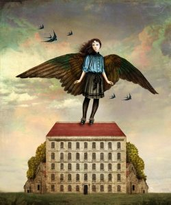 Christian Schloe I am a bird now